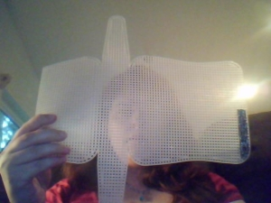 plastic canvas purse