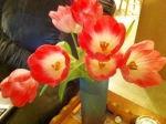 Tulips from my husband